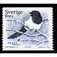 F.2239, Fyra fåglar - fyra årstider